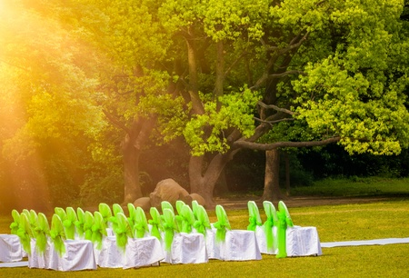 the outdoor wedding of a park. photo