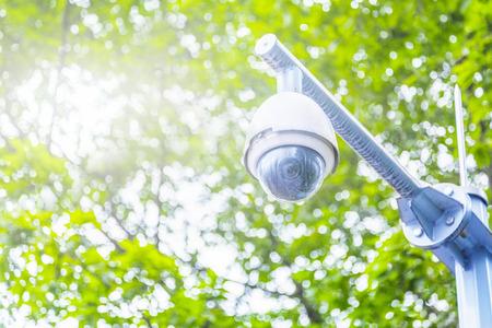 under surveillance: surveillance camera under the tree
