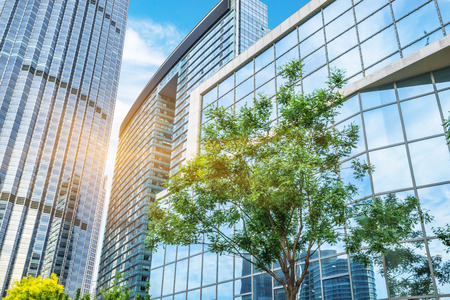 low angle views: modern office building with green trees Stock Photo