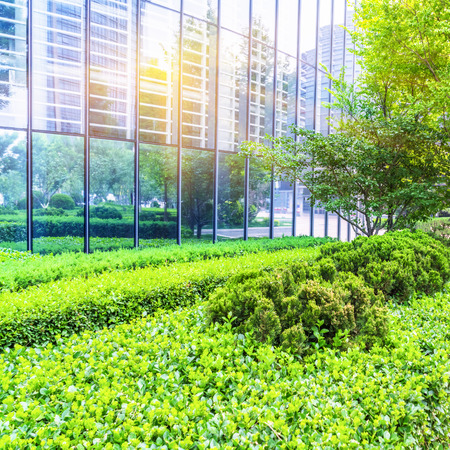 green office: Modern office building with green bushes,tianjin china. Stock Photo