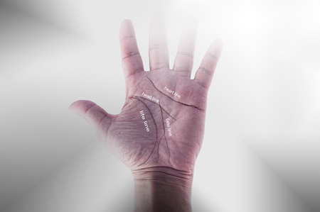 chiromancy: Chiromancy.black contours on palm, on white background
