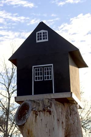 dollhouse: small black house on a big root