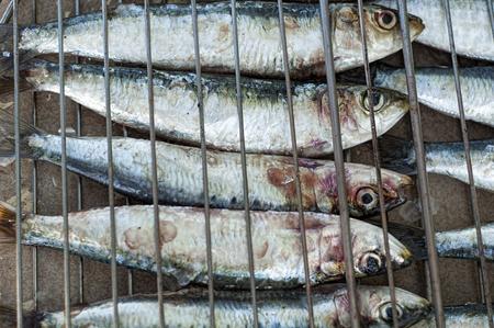 coal fish: fresh sardines on a barbacue Stock Photo