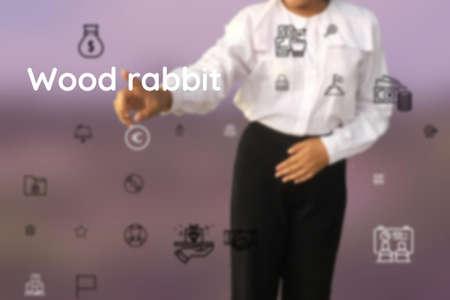 Wood rabbit submit with feist, Bunny, fun, elf, santas, jackrabbit, ladybug, bunny girl, flamingo, bambi