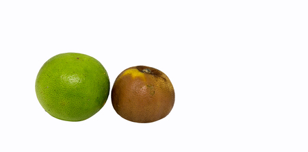 Lemon rot on isolated white background with clipping path