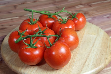 Tomatoes on the Vine on a rustic setting of various woods Stock Photo - 14020342