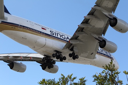 LOS ANGELES, CALIFORNIA, USA - MARCH 8, 2013 - Singapore Airlines Airbus A-380 lands at Los Angeles Airport on March 8, 2013. The plane is the worlds largest passenger airliner and seats 525 people. Editorial