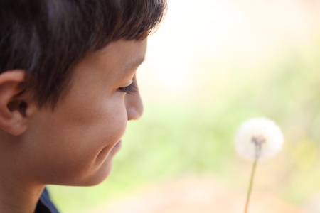Boy with dandelion - copy space to right - shallow depth of field