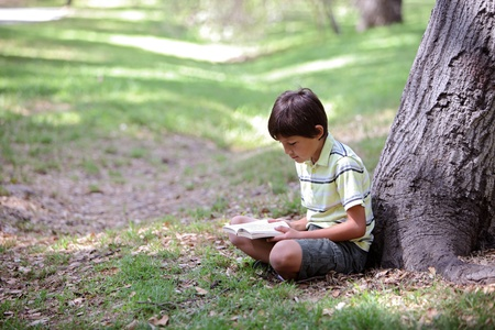Young boy reading a book  in the woods
