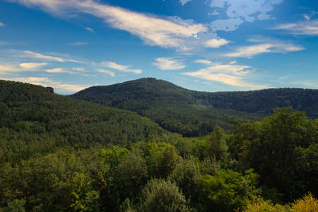 beautiful view into the Palatinate Forest Stock fotó
