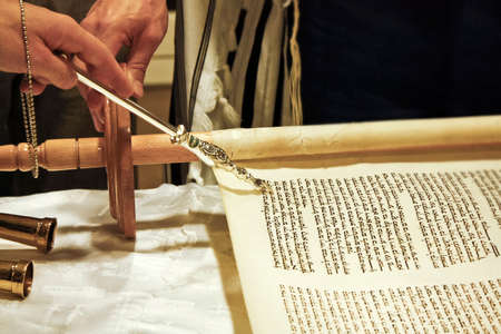 torah: Torah scrolls; is on the table; wooden handles; gold nozzle holder; close up