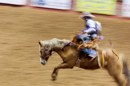 acción, barril del chapeau, caballo de peligro, corredor del deporte, jinete que funciona con la silla de montar, diversión rápida, animal del estado del deporte, occidental