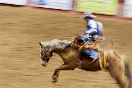 action, chapeau barrel, danger horse, sport racer, rider running saddle, fast fun, sport state animal, western