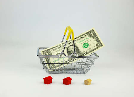 Shopping basket with US dollar, toy houses on white background