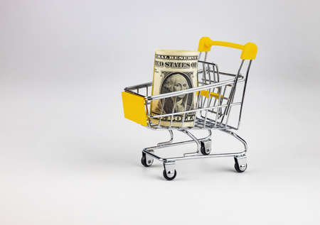 A toy shopping cart with $ 1 in it. White background.
