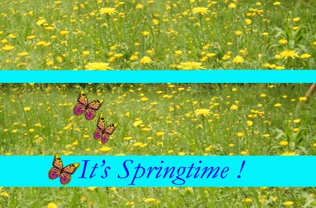 It's Spring time Stock Photo - 6172295