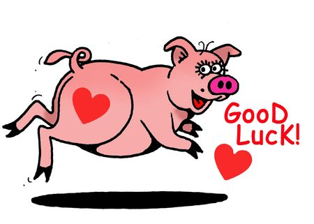 Good Luck, PiggY!