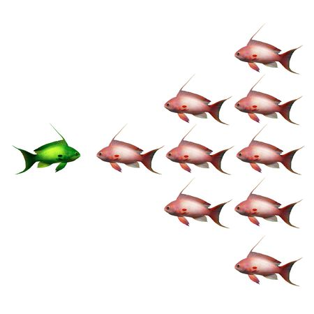 fish group, symbol photo