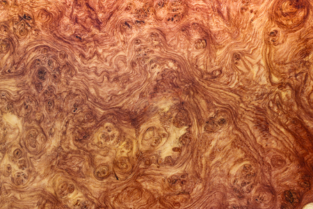 Amboyna wood burl