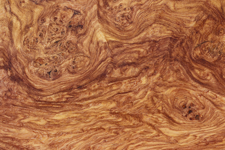 Amboyna wood burl exotic