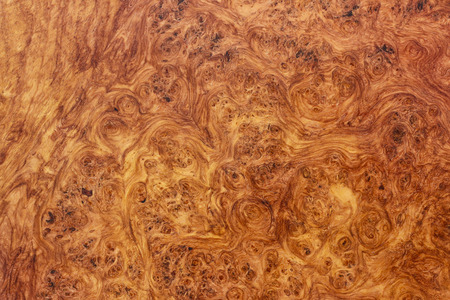 Amboyna wood burl and exotic Stock Photo
