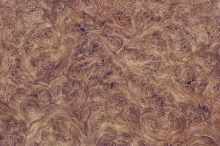 Afzelia wood burl nice exotic Stock Photo