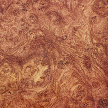 Amboyna wood exotic nice burl