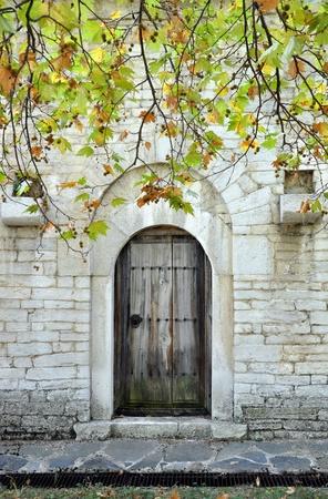 sicomoro: vecchia porta sotto il sicomoro Archivio Fotografico