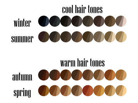 Seasonal color analysis hair palette 矢量图像