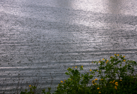River surface with rain drops on it