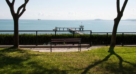 bench in park among trees with sea view