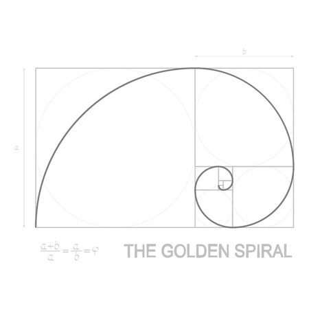 vector illustration on Golden Ratio concept