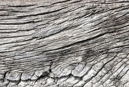 old wooden wall background for your design