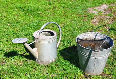 bucket with water and watering can on the background of green grass