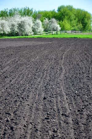 plowed black soil and spring trees around