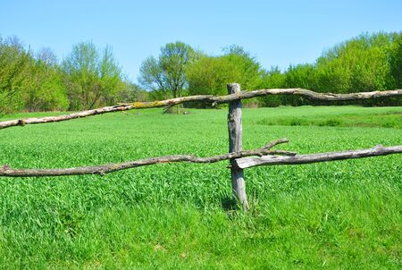 old wooden fence on the background of green grass Banco de Imagens