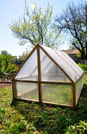 homemade small greenhouse on the background of spring vegetation