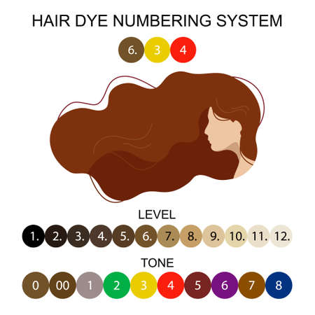 Stock vector palette with hair dye numbering system. Woman with long wavy hair. Illustration in flat style. Quality image for your project Illusztráció