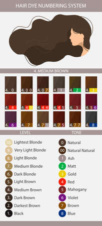 Stock vector palette with hair dye numbering system, levels, tones and undertones. Palette for level 4 hair color depth. Woman with long wavy hair. Illustration in flat style
