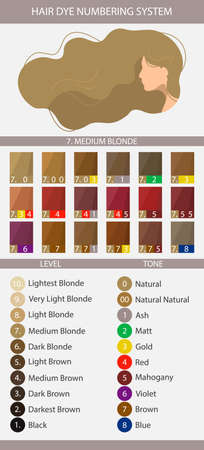 Stock vector palette with hair dye numbering system, levels, tones and undertones. Palette for level 7 hair color depth. Woman with long wavy hair. Illustration in flat style