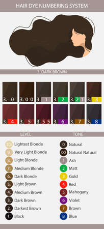 Stock vector palette with hair dye numbering system, levels, tones and undertones. Palette for level 3 hair color depth. Woman with long wavy hair. Illustration in flat style