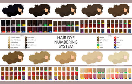 Stock vector palette with hair dye numbering system, levels, tones and undertones. Palette for 10 levels of hair color depth. Women with long wavy hair. Illustration in flat style