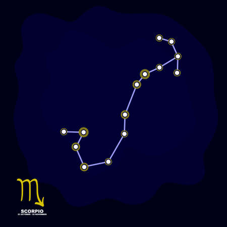 vector image with Scorpio zodiac sign and constellation of Scorpio for your project