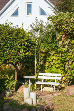 White bench under a metal arch in the summer garden. Quality image for your project