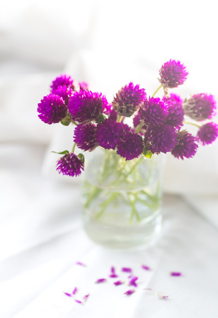 Composition of small, delicate flowers, beautifully laid out on the table and put in a glass Stock Photo