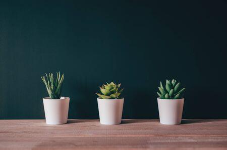 Artificial plant pot on wood desk