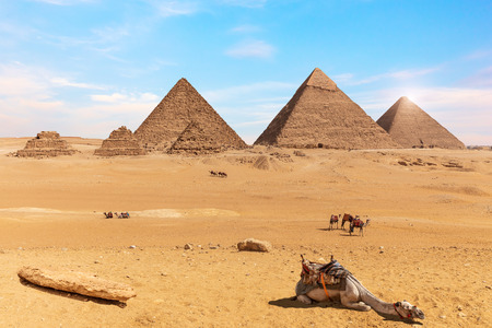 The Pyramids of Giza and camels in the desert of Egypt. Banque d'images - 125039315