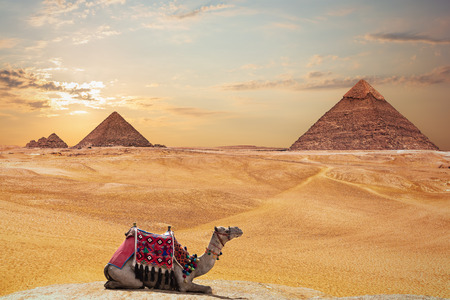 The Pyramid of Khafre and the Pyramid of Menkaure and a camel, Giza, Egypt Banque d'images - 125043789