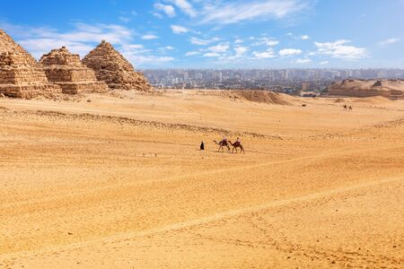 Small Pyramids of Menkaure queens and camels in Giza desert