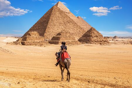 Egyptians on camels near the complex of Giza Pyramids, Egypt Imagens